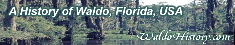 A History of Waldo, Florida, USA