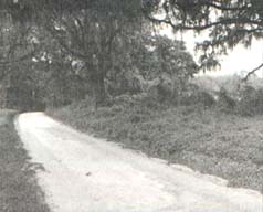 Old Belamy Road